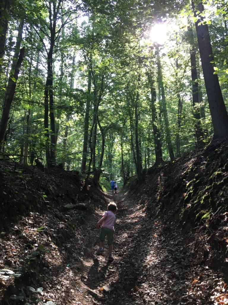 traversée du bois vers Durnal