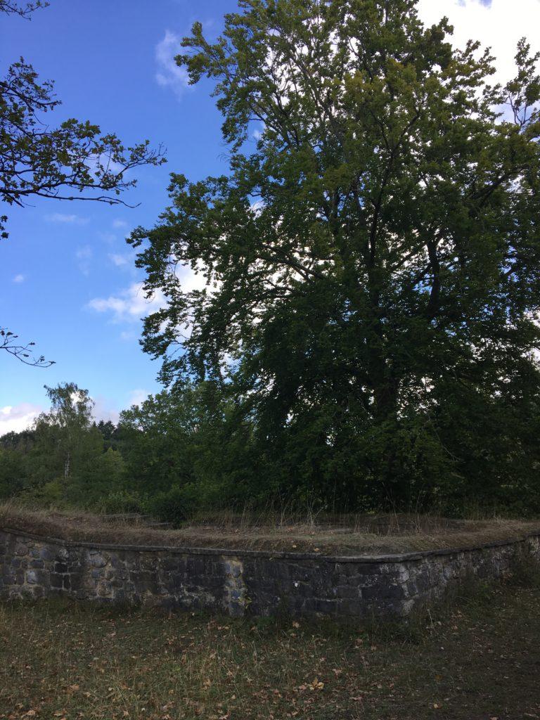 ruines de la forteresse romaine et médiévale a furfooz