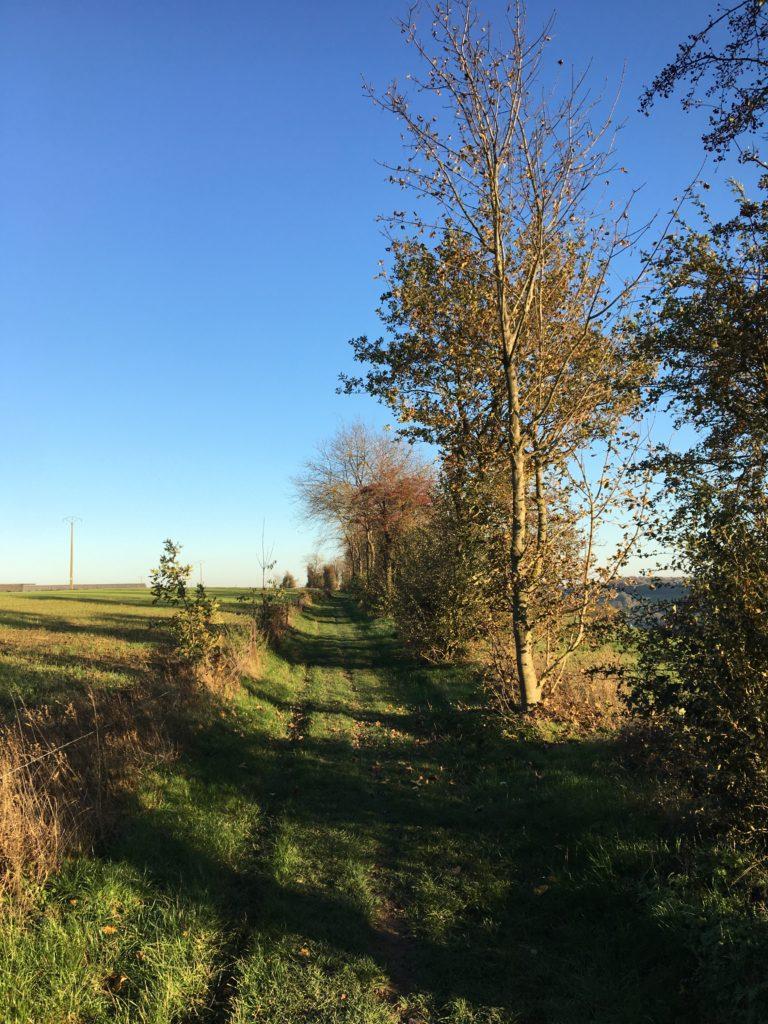 Chemin vers la ferme de Coux